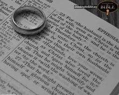 7336163426 9b20e87653 m Sexo y cristianismo sexo noviazgo moral matrimonio Iglesia cristianismo afectividad