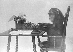 monkey-typing-R1