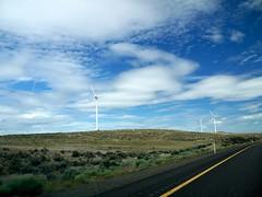 Windmills near Ellensburg