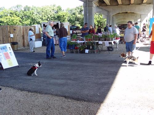 Farmers Market June 16, 2012 (8)