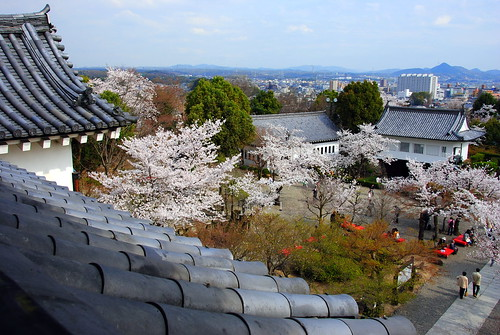 Inuyama Spring 2014 053r
