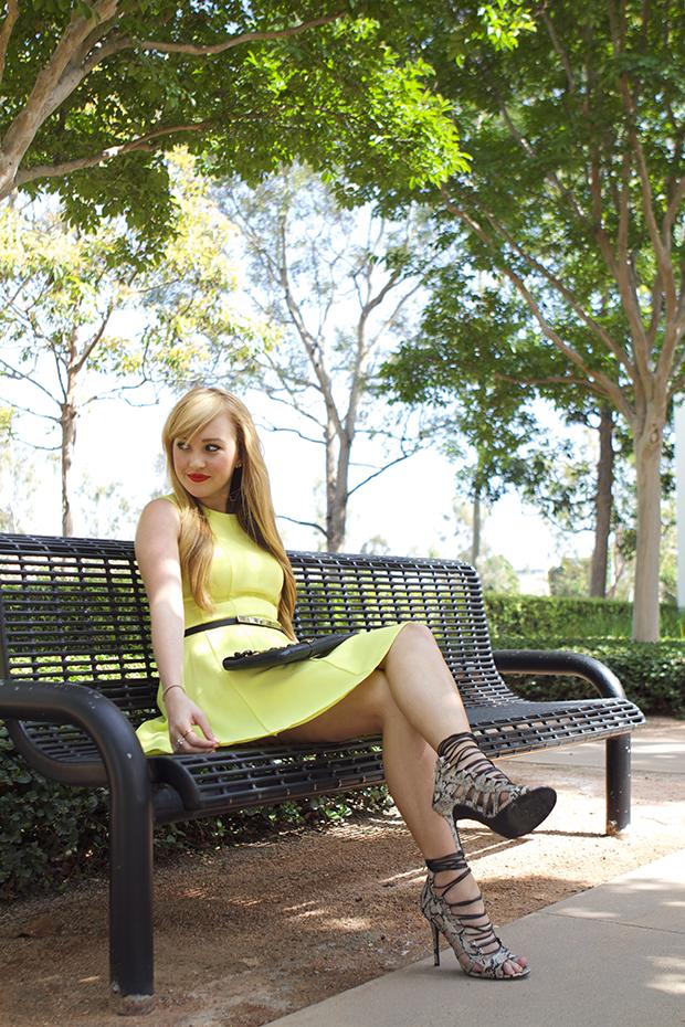 bright skater dress