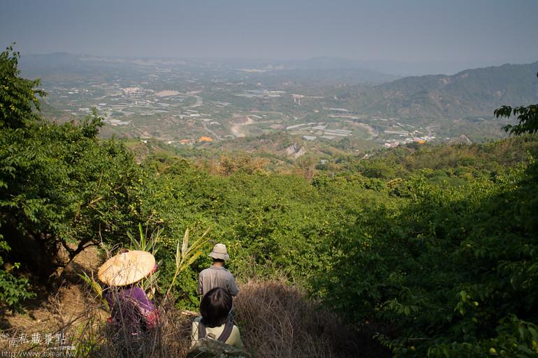 台南私藏景點--南化採梅 (26)