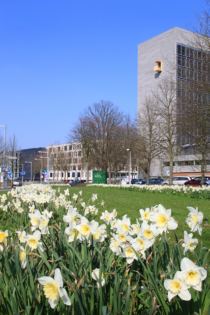 Leuven_IMG_7687