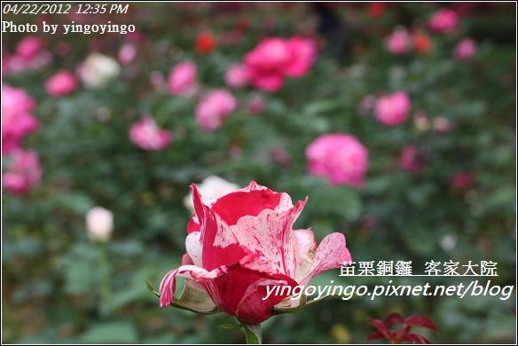 苗栗銅鑼_客家大院20120422_I3303