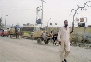 Pakistan 🇵🇰 .
