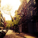 Afternoon Sunlight on a Greenwich Village Street - New York City by Vivienne Gucwa