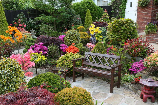 Garden seat amongst the spring colours may 24th for Gardening 4 all seasons