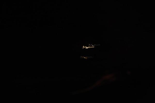 firework blip