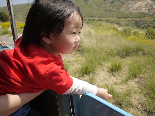 120422 SD Zoo Safari Park