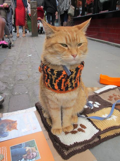 Bob the cat in Covent Garden