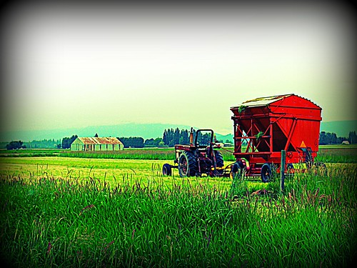 06-14-12 Orange Tractor by roswellsgirl