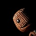 Inquisitive Sackboy (167/365)