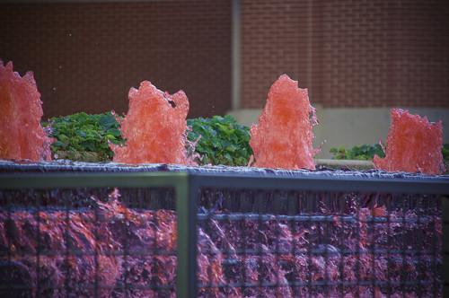 Gingham & Pink Hues