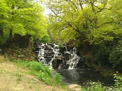 Virginia Water 20 May 2012 (0)