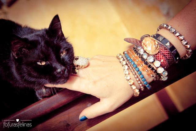 Love cat!