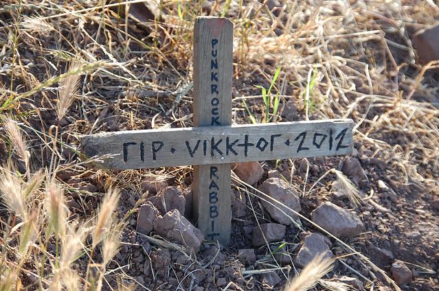 Buckeye Grave