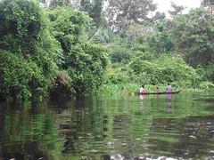 Venezuela Delta del Orinoco