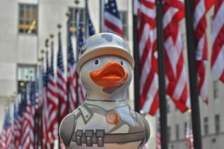 GI Duck