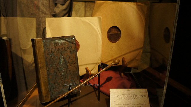 HARRY POTTER THE EXHIBITION - ArtScience Museum, Singapore (54)