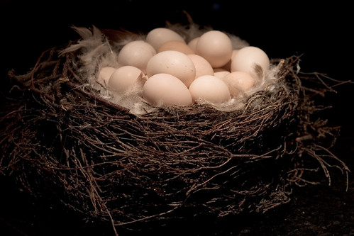 Nest Egg Basket