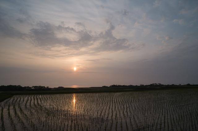 棚田と夕陽