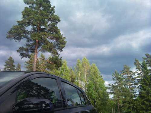 Car and tree by XPeria2Day