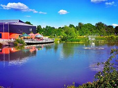 On a #pond in Ilmenau.