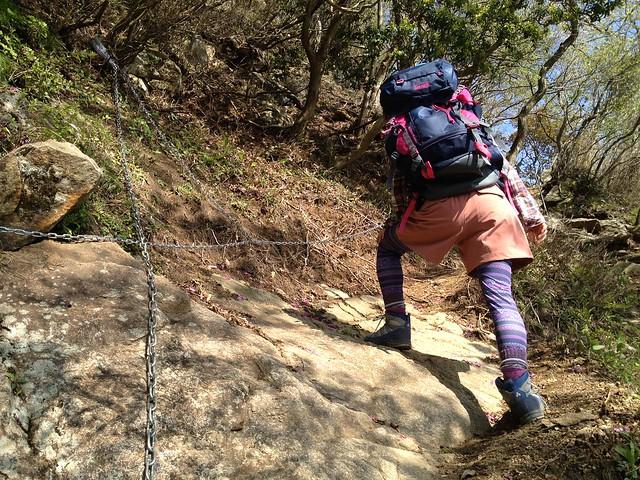 錫杖ヶ岳 加太コース 岩場 しな