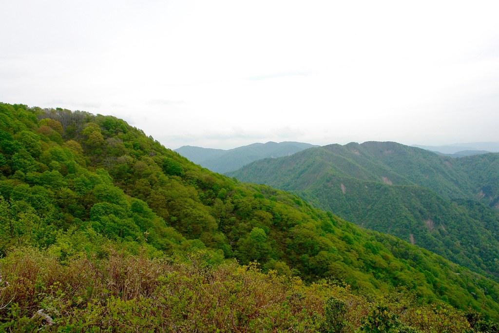 火燈山 小倉谷山 富士写ヶ岳 周回 その4