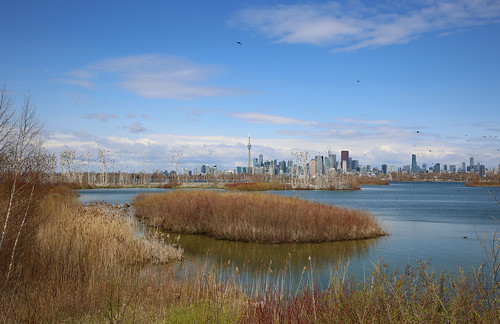 Toronto: Tommy Thompson Park