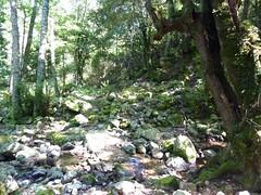 Dans la descente directe Bocca di Cateri - L'Agnu : sur le sentier de retour à l'Agnu, traversée du ruisseau du Macciocu et son cairn
