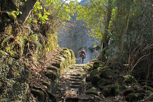Camino Moria2.jpg