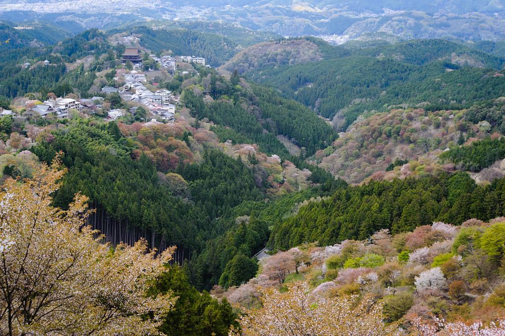 Nara - Yoshino