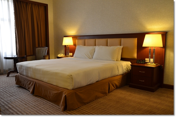 Grand River View Hotel - Queen Size Bed