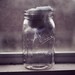 jar image, photo or clip art