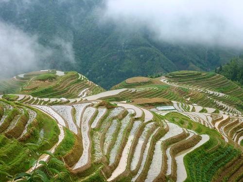 C-Guangxi-Pingan-Terrasse des 7 etoiles (53)