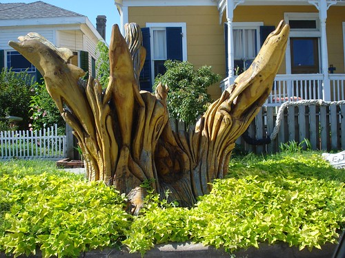 Galveston-TreeArt-DS - 3