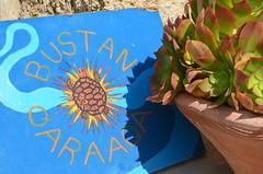 樸門永續設計社區Bustan Qaraaqa入口意象