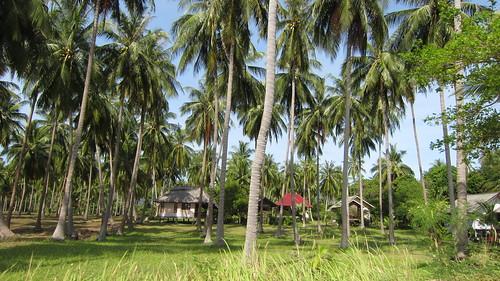 Koh Phangan Holiday last day (8)