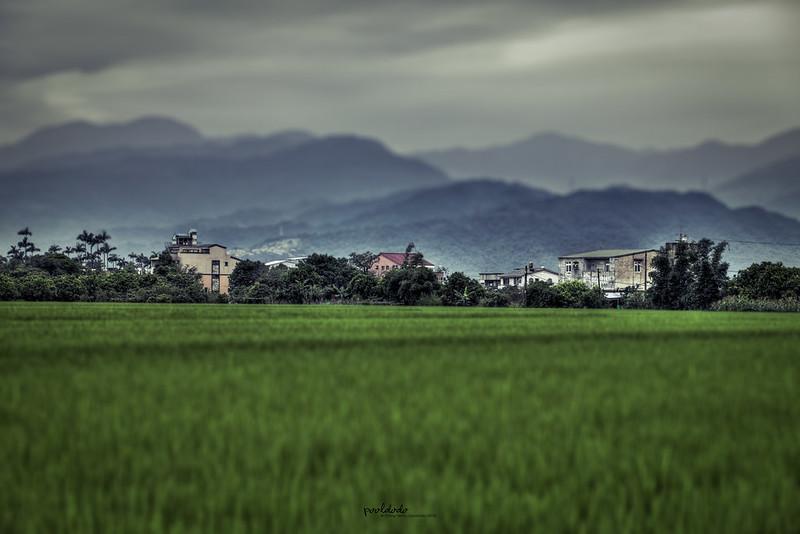 [scenery] farmland in Ilan