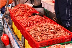 fish, seafood, invertebrate, food, butcher,