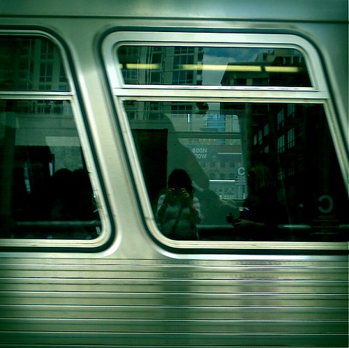 the brown line