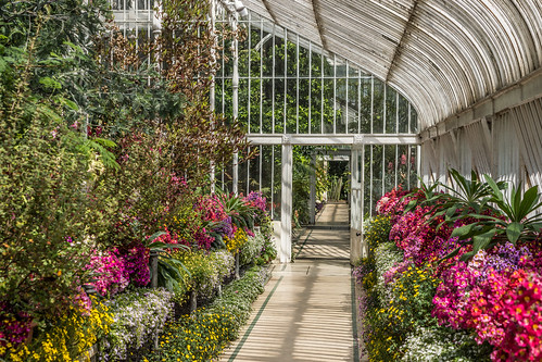 The Botanic Gardens In Belfast by infomatique