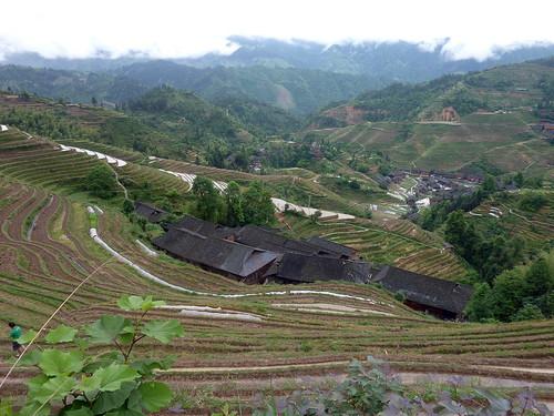 C-Guangxi-Dazhai-Descente (10)