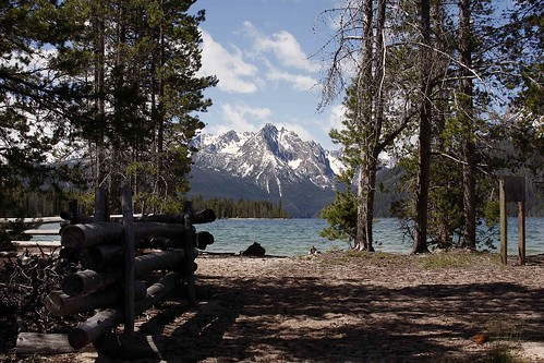 sawtooths-redfish-blog