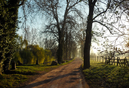 morning landscape path roanne