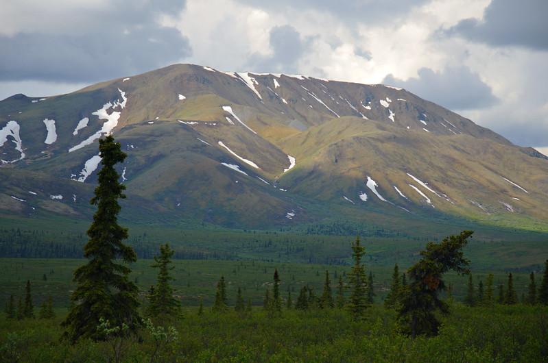 Mountains turning green