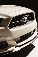 Ford-2015-Mustang-50th-Ed-18