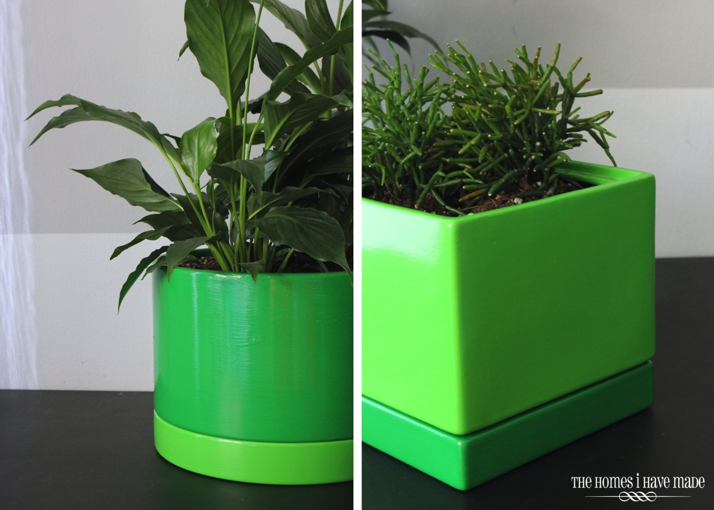 Green Planters-008